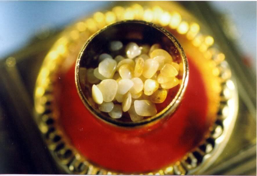 Lễ cung nghinh, an vị ngọc xá lợi Phật tại Công Viên tưởng niệm Thiên Đức